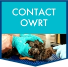 CONTACT-OWRT