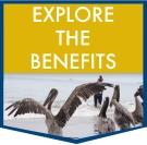 EXPLORE-THE-BENEFITS