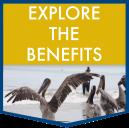 Explore the benefits