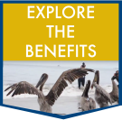 Explore the benefits