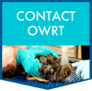 Contact OWRT